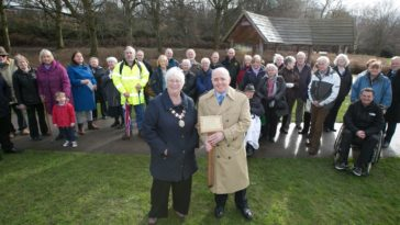 Oak tree in memory of former Chair