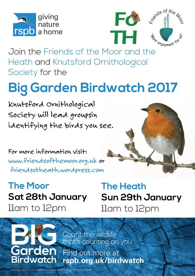 Big Garden Bird Watch 2017