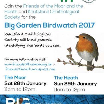 Big Garden Bird Watch 2017